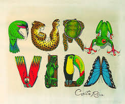 Image of the words Pura Vida