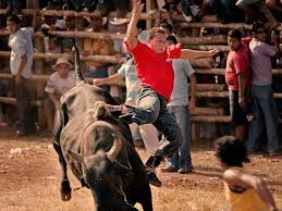 Bull Fighting Costa Rica Style