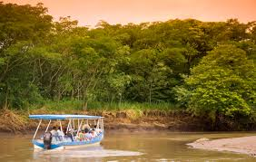 Guanacaste Costa Rica Palo Verde