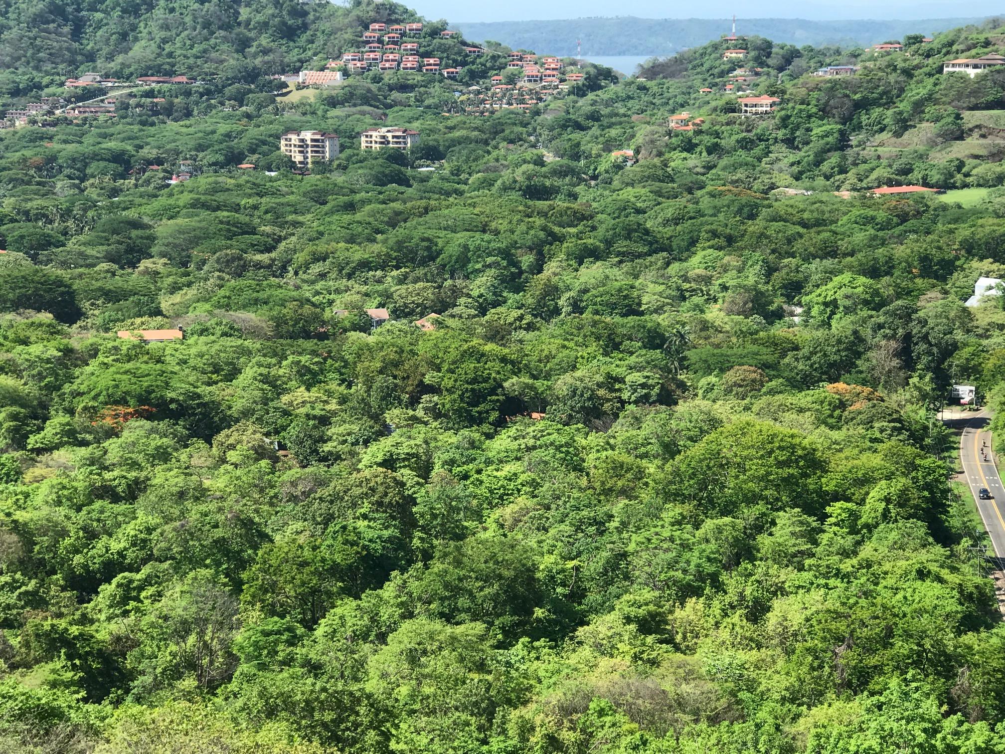 Green season Playa Hermosa