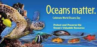 poster for World's Ocean Day in Playa Hermosa Costa Rica