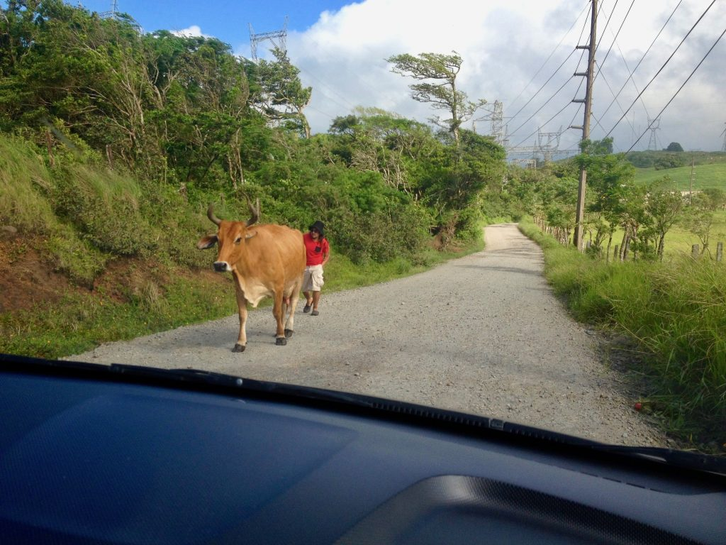 4x4 driving down a gravel road in Costa Rica
